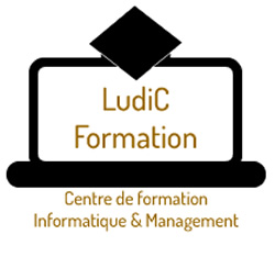 LudiC Formation